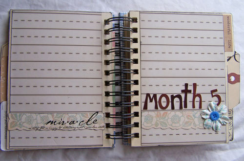 Month-5