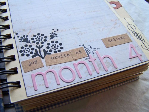 Month-4-closeup